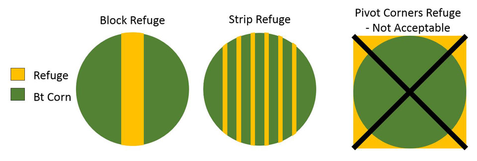 Illustration of block and strip refuges