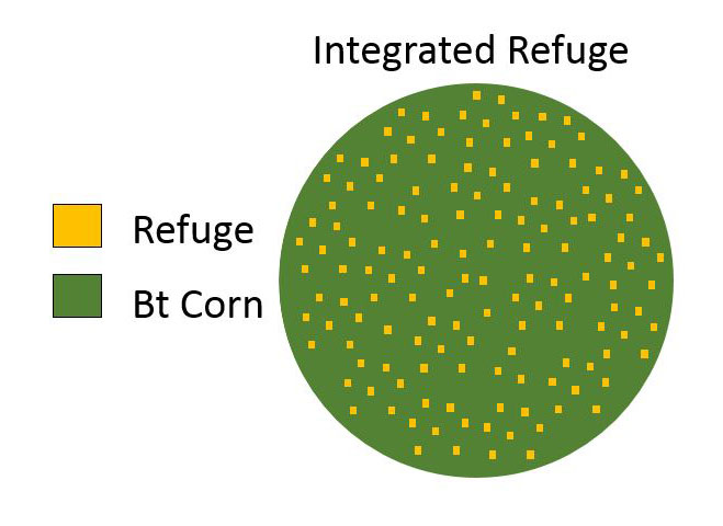 Integrated refuge
