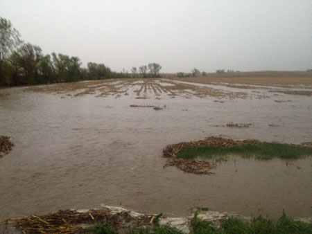 Flooded field in Saunders County