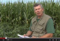Soil Infiltration Video Overview