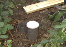 Soil Infiltration Test