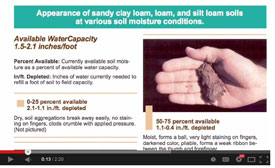 Testing soil water by hand video