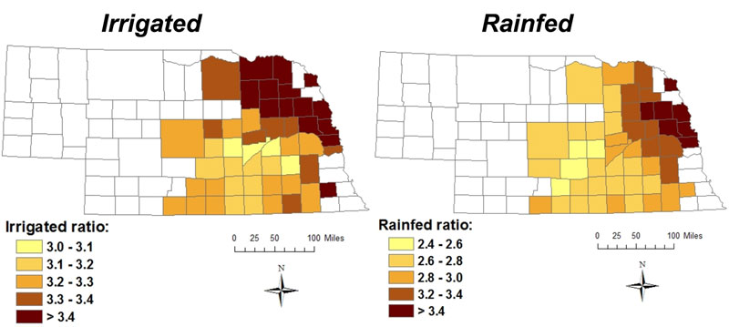 Nebraska county maps of irrigated and rainfed responses