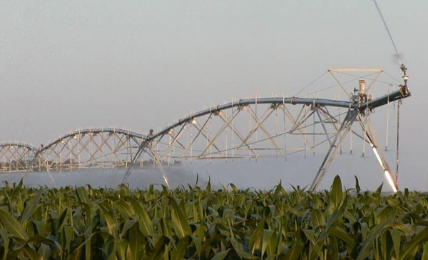 center pivot irrigation in corn