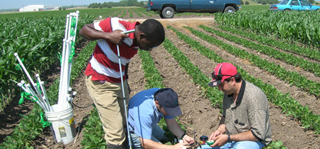 University researchers installing soil water sensors