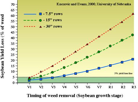 Soybean yield loss graph