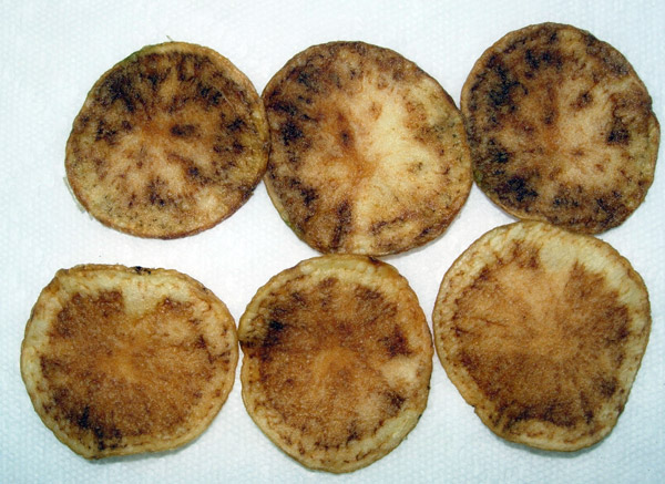 Potato chips from infected tuber