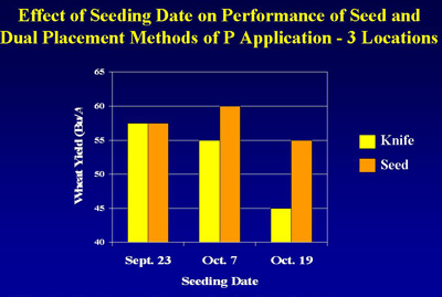 Figure 2. Effect of seeding rate on performance of seed and dual placement methods of phosphorus application at three locations.