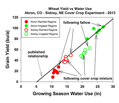UNL Researchers Examine Use of Cover Crops in Semi-Arid