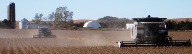 Combines harvesting soybeans photo by John Hay