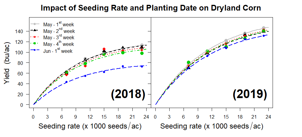 Impact of Seeding Rate and Planting Date on Dryland Corn
