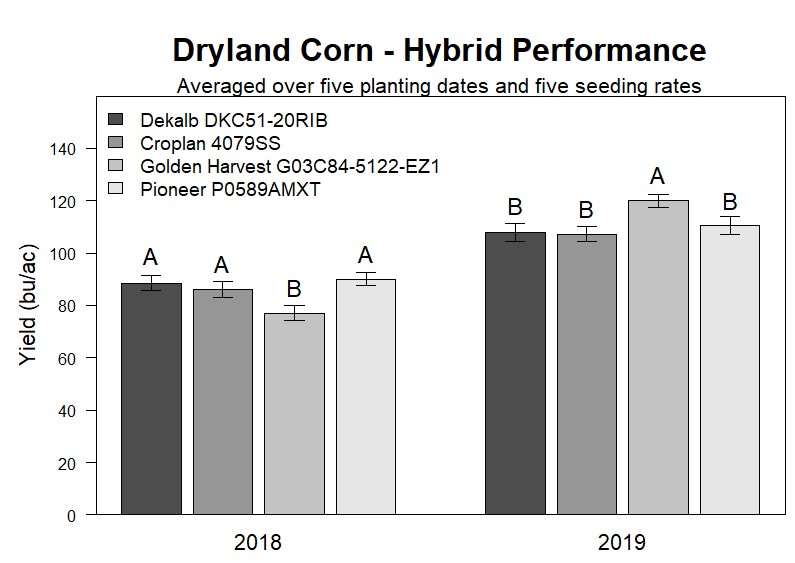 Dryland Corn - Hybrid Performance