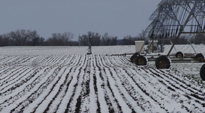 May 1, 2013 snow-covered soybean field