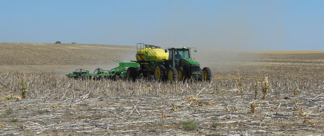 Air-seeded wheat planting near Brule