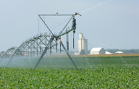 Photo - Soybean irrigation