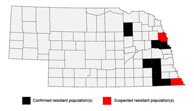 Map of counties with resistant waterhemp