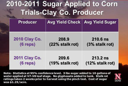 Clay County producer research results from applying sugar to corn.
