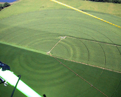 Photo of variable, concentric rings in center pivot irrigated fields