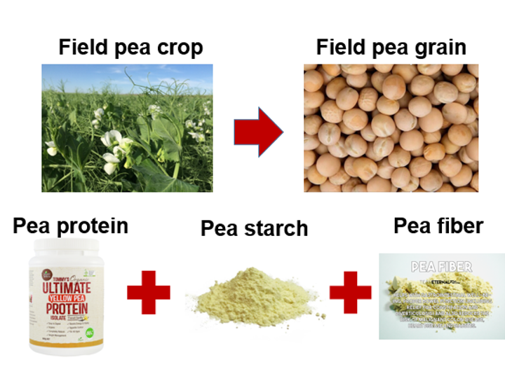 Field peas grain processing chart