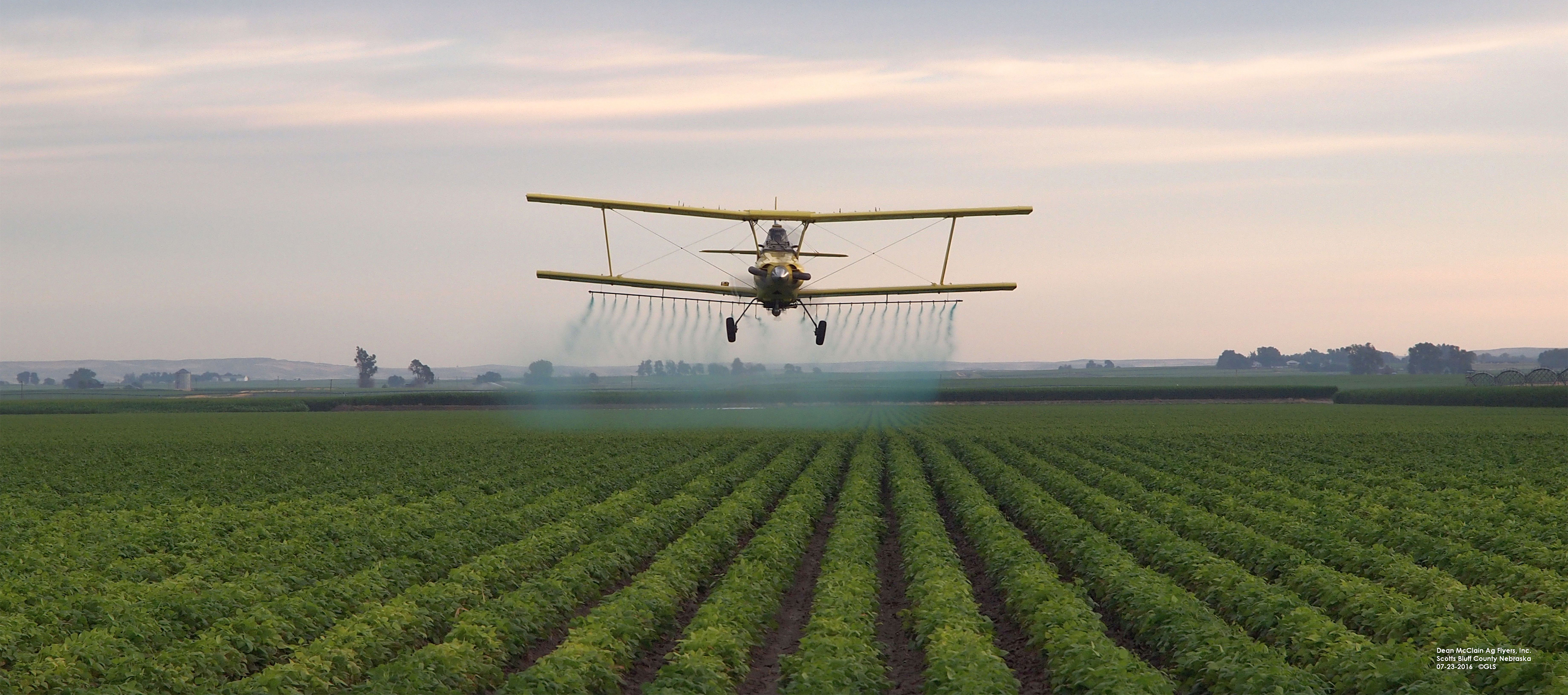 Aerial application of pesticides in beans. (Photo by Gary Stone)