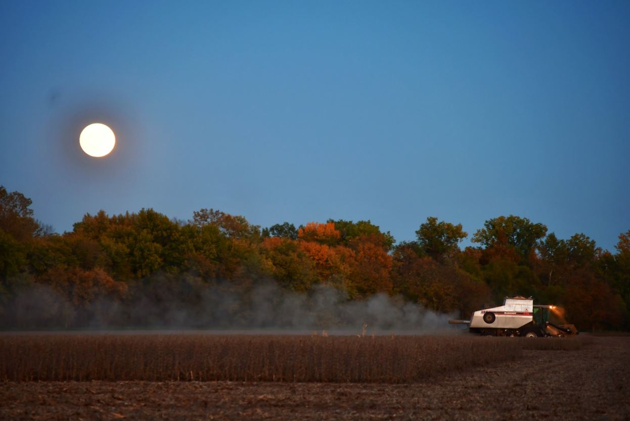 A full moon lights the way for this river bottom field in Richardson County to be harvested Tuesday. As of Monday, 34% of the state's corn and 54% of the state's soybeans had been harvested. (Photo by Laura Thompson)