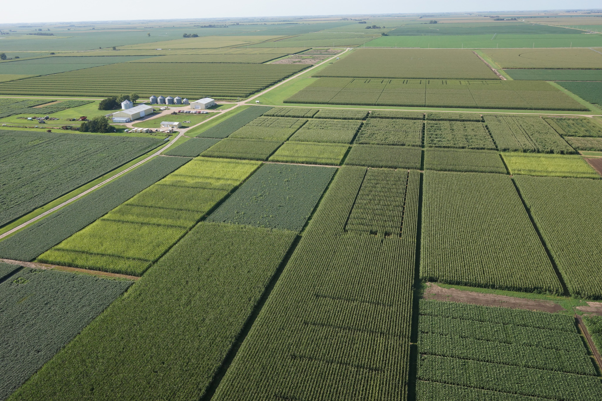 View Latest Crop and Pest Research at South Central Ag Lab
