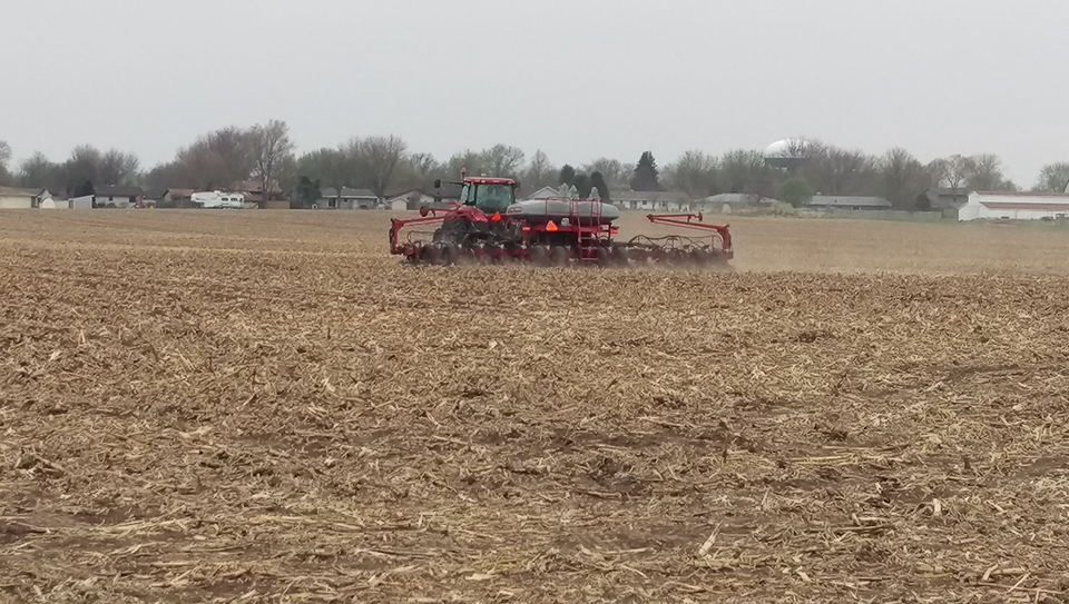 Planting in York County