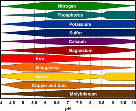 Chart with nutrients listed in bright colors, indicating where on the PH scale they are most available.