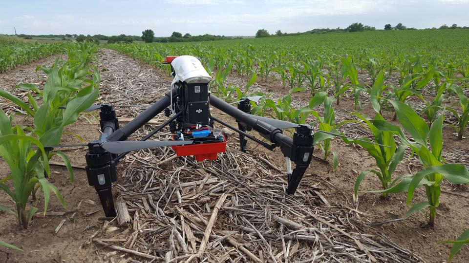Figure 1. Data collected by the multispectral sensor on this drone will be used to direct in-season nitrogen fertilizer applications, part of a producer research project funded by the North Central Region Sustainable Agriculture Research and Education program. (Photos by Laura Thompson)