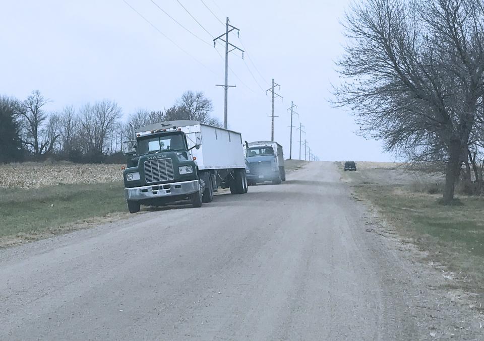 Trucks loading grain