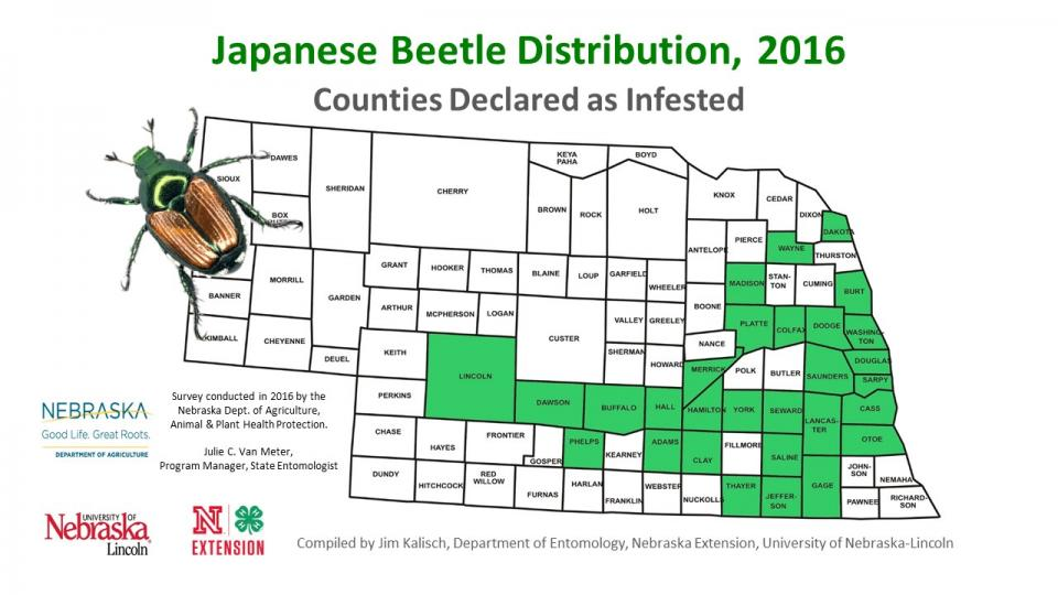 Nebraska map of Japanese beetle distribution