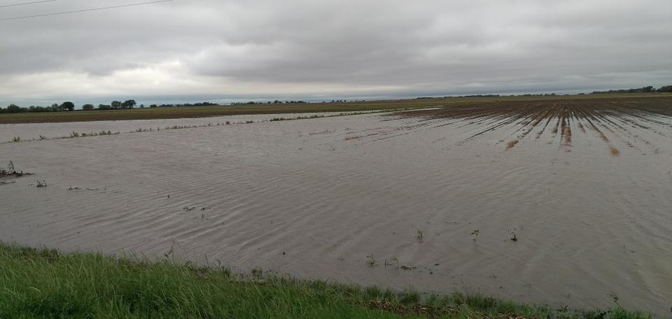 Flooded field in south central Nebraska