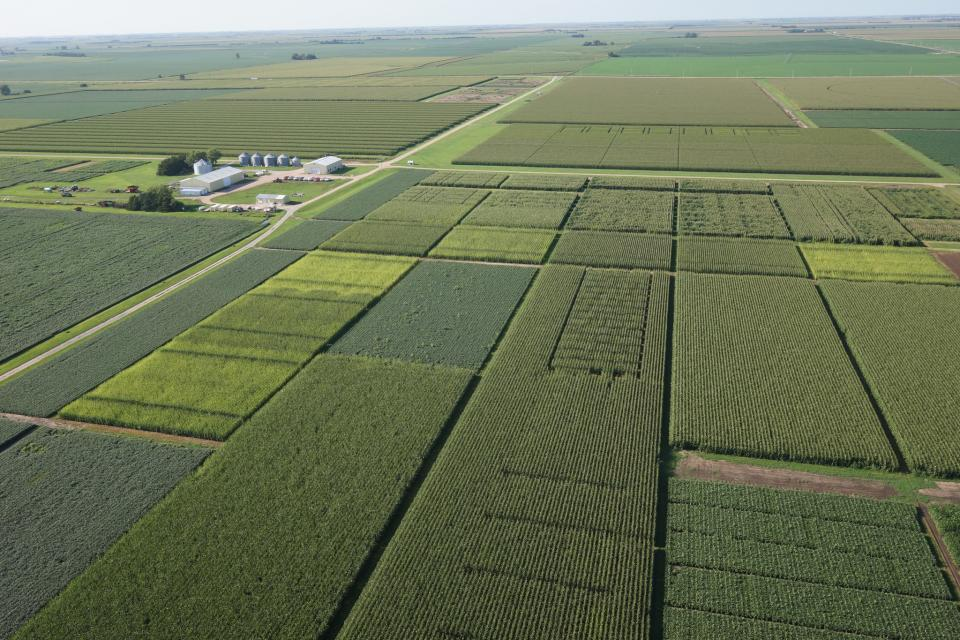 Each year more than 100 research trials are conducted at the South Central Agriculture Laboratory near Harvard. The Aug. 29 SCAL Field Day invites the public to view and learn about the most recent research from UNL and USDA scientists.