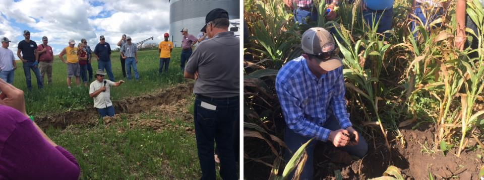 Soil health summer field days