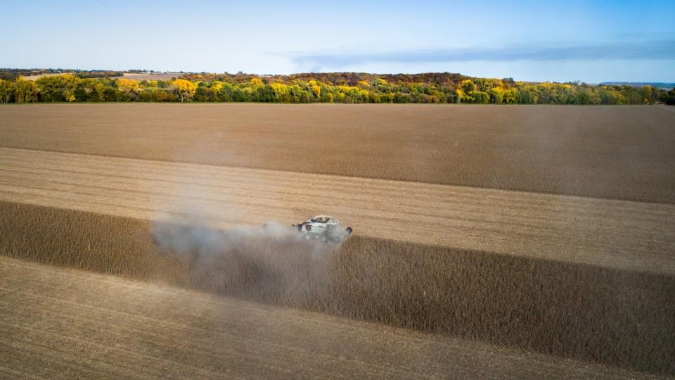 Combining soybeans in 2018