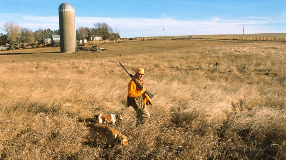 A hunter walking a private field with his dog in Burt County