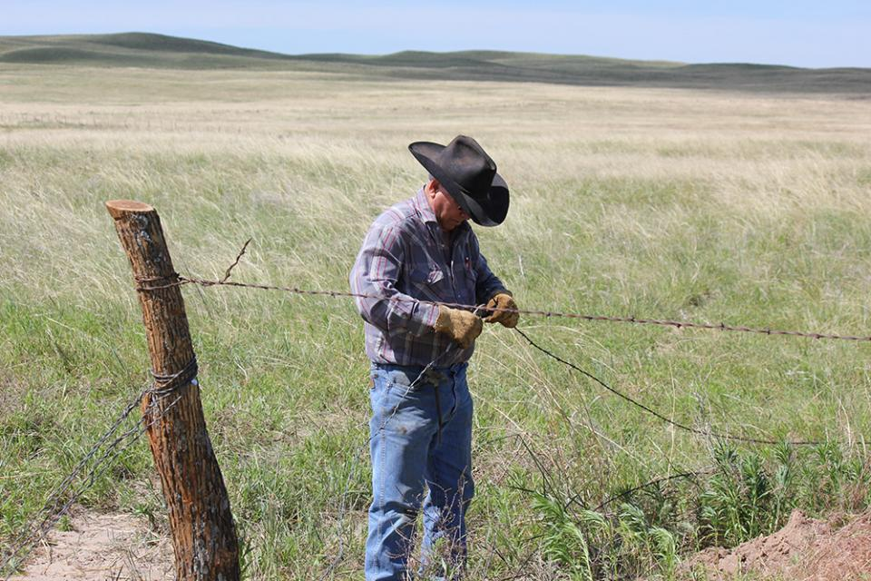 Rancher fixing a fence damaged by spring weather.