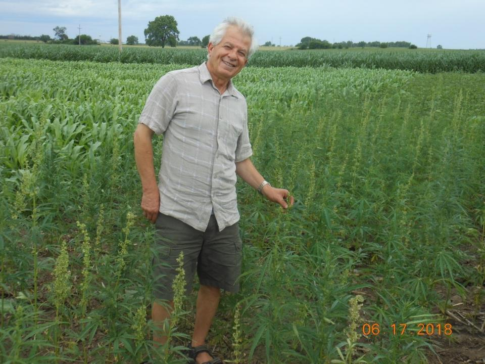 Ismail Dweikat, University of Nebraska-Lincoln professor of agronomy and horticulture, has been researching hemp production in small plots for the last two crop seasons.