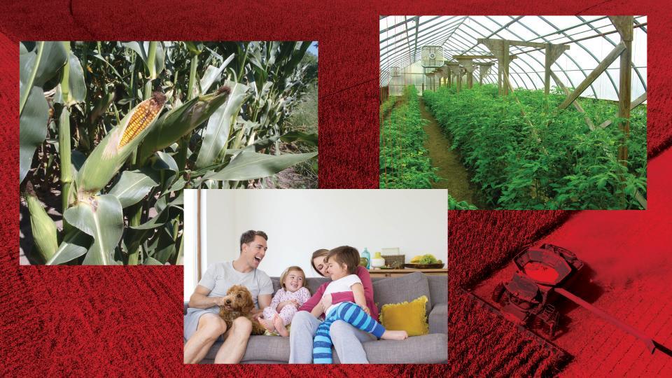Composite photo showing benefactors of pesticide education