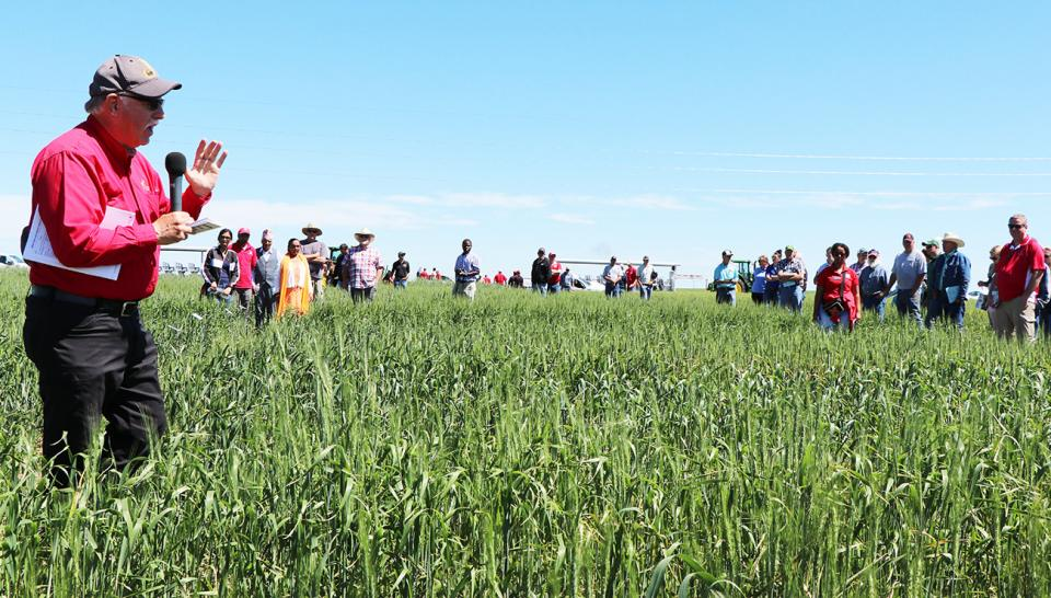 Stephen Baenziger speaking to growers at one of the Winter Wheat Variety Trial field days.