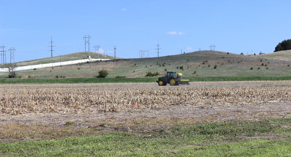 Planting plots in the 2019 UNL-TAPS program
