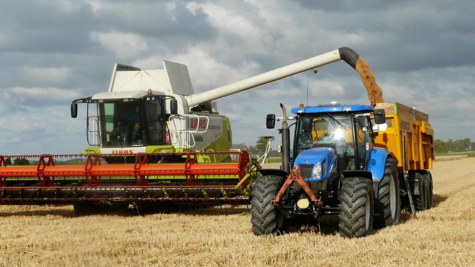 Combine dumping grain at harvest
