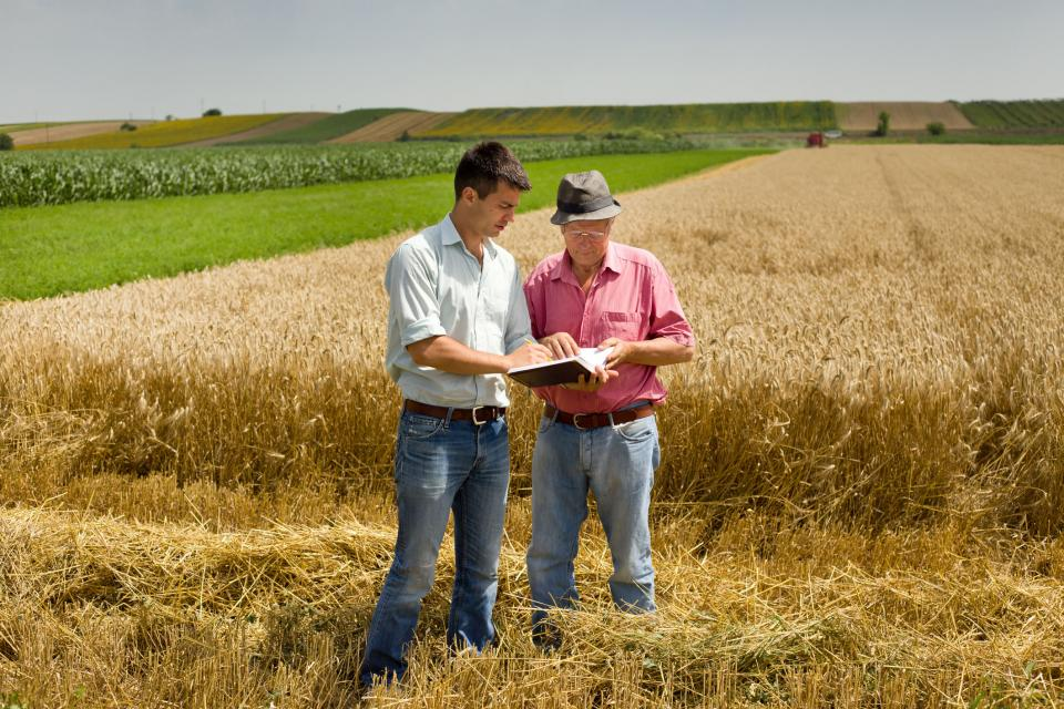 A mediator reviewing information with a farmer in the field