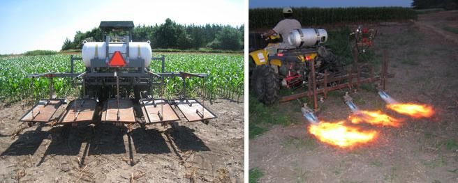 Flame weeder developed by UNL professors Stevan Knezevic and George Gogos.