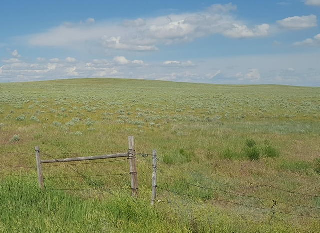 Nebraska High Plains grassland, containing grasses such as western wheatgrass, crested wheatgrass, and needle-and-thread.