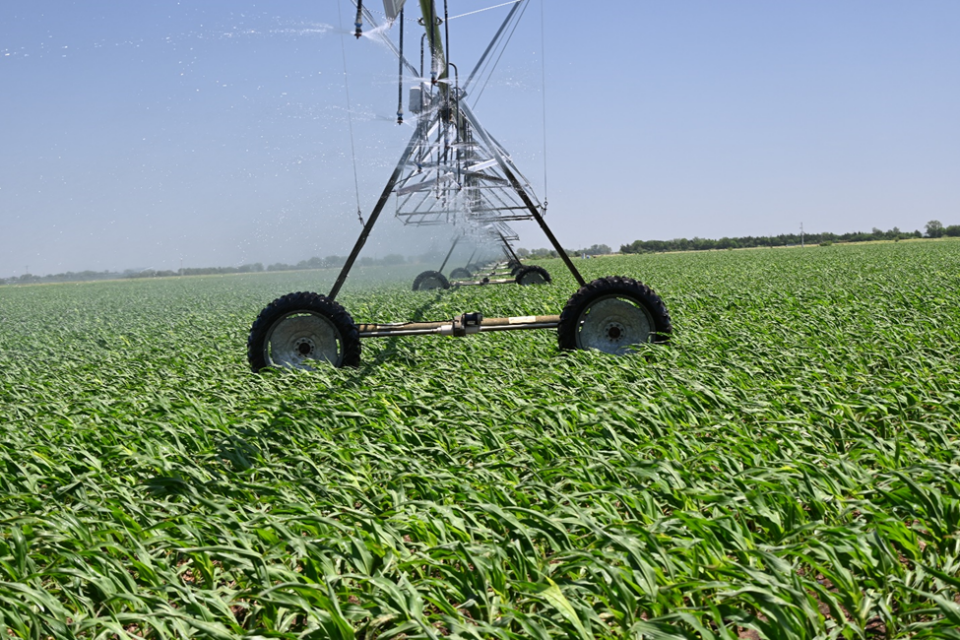 Center pivot irrigation system watering a field
