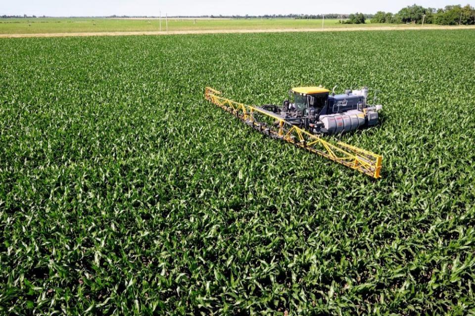nitrogen application to corn field