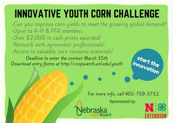 innovative youth corn challenge graphic