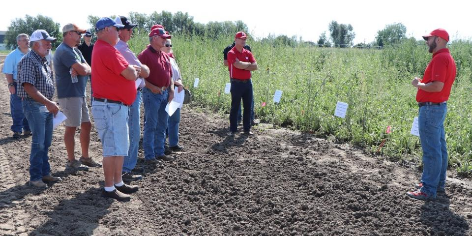 Integrated Weed Management Specialist Nevin Lawrence speaks in front of a weed control plot