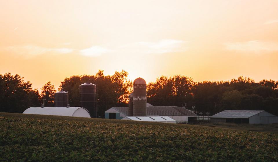farm setting at sundown